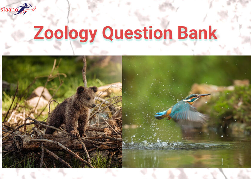 Zoology Question Bank