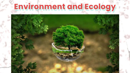 environment and ecology mcqs