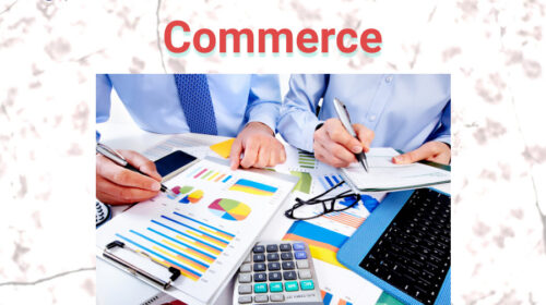 Commerce Multiple Choice Questions and Answers pdf download(1000+ Questions)